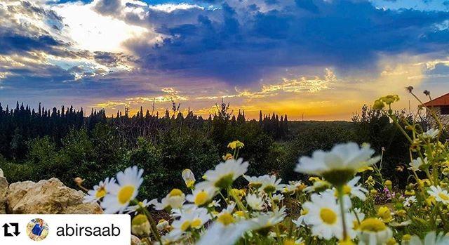 Lebanese #🌅 .Hello from Hamat #anfehalkoura @abirsaab 👍🏻