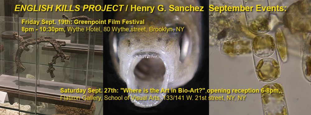 "Dewey Thompson and Jens Rasmussen curate a grouping of films for the Greenpoint Film Festival revolving around the necessity of the North Brooklyn Boat Club waterway, including work from Art Practice Alumni  Henry Sanchez  (MFA AP14).   Henry will also have work in the exhibition ""Where is the Art in Bio-Art?"" in the School of Visual Arts Flatiron Gallery"