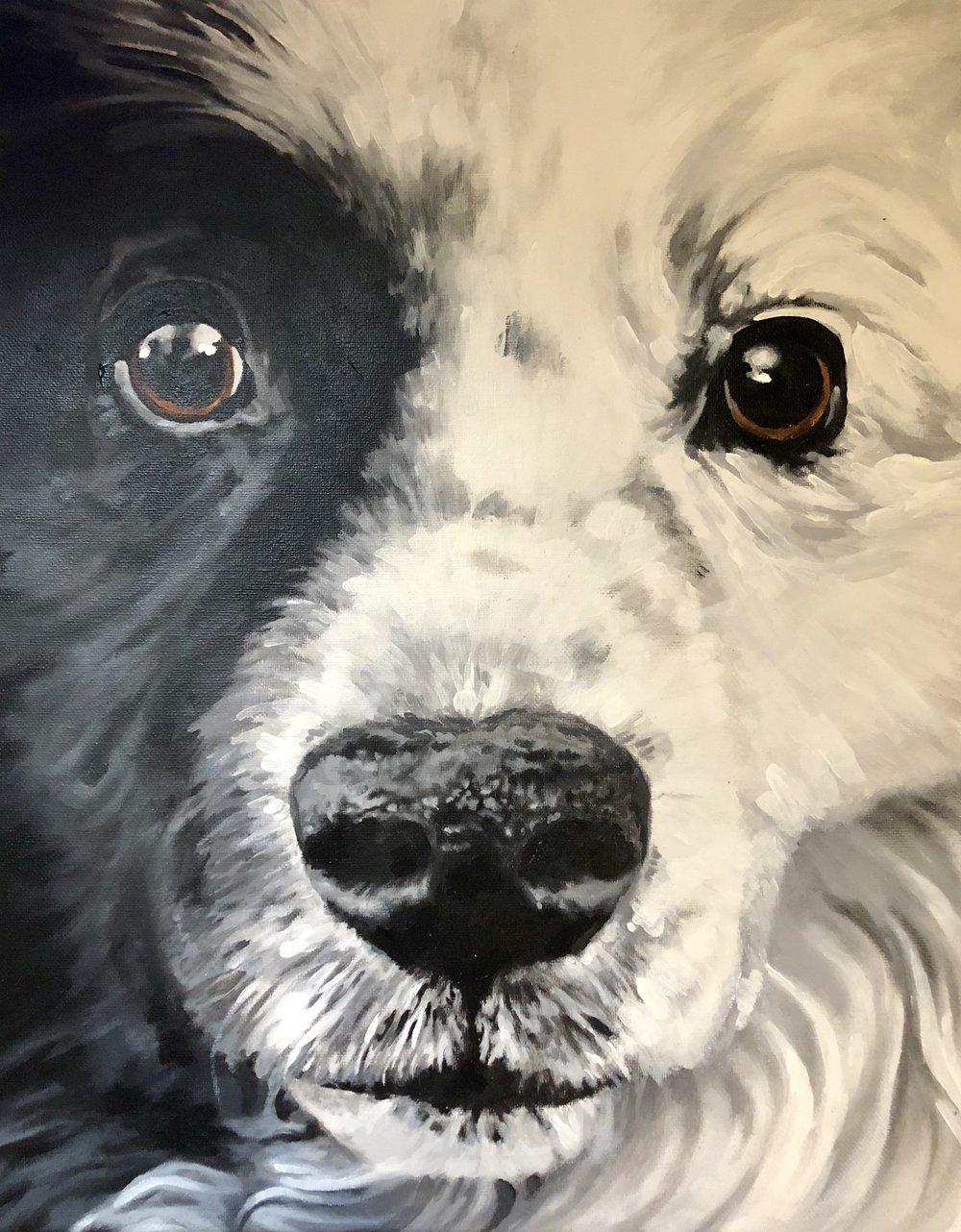 Artwork commissioned by SASLLC to Artist Dawn Pogany