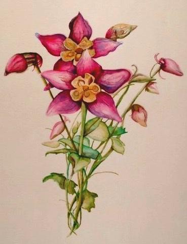 Artwork by artist and owner Samantha Silvas