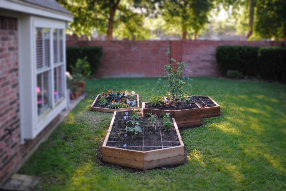 garden final.jpg