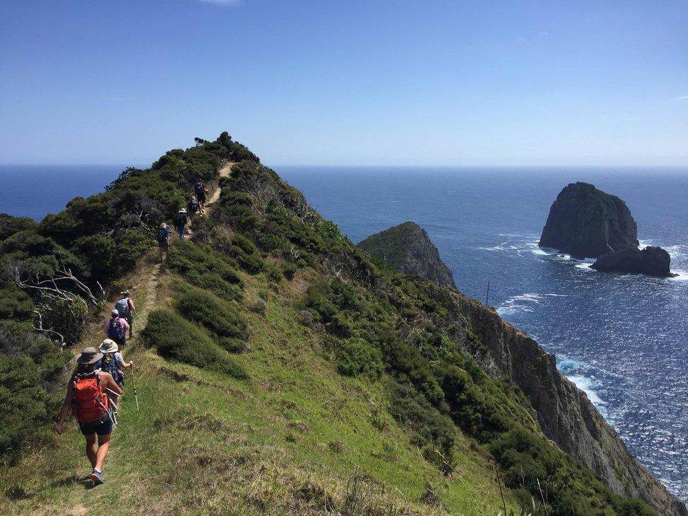 Hiking Cape Brett