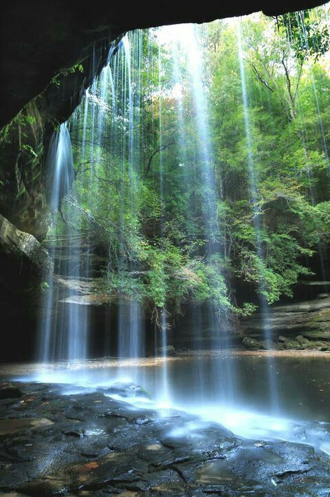 Take a 1.5 mile hike through lush green vegetation of the Bankhead National Forest and you will find a mystical waterfall and swimming hole hidden in a slot canyon. The waterfall flows year round and it's stunning beauty never disappoints.