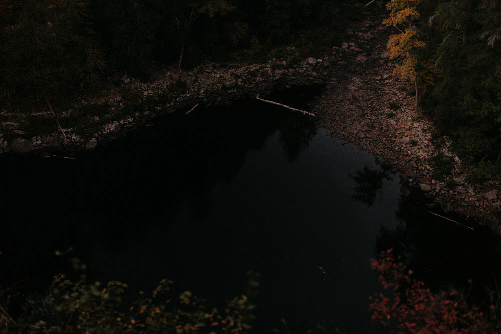 Forest + Falls Workshop April 23-27, 2017 | Fall Creek Falls State Park
