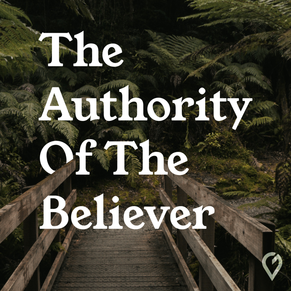 AUTHORITY WEB COVER-02.png