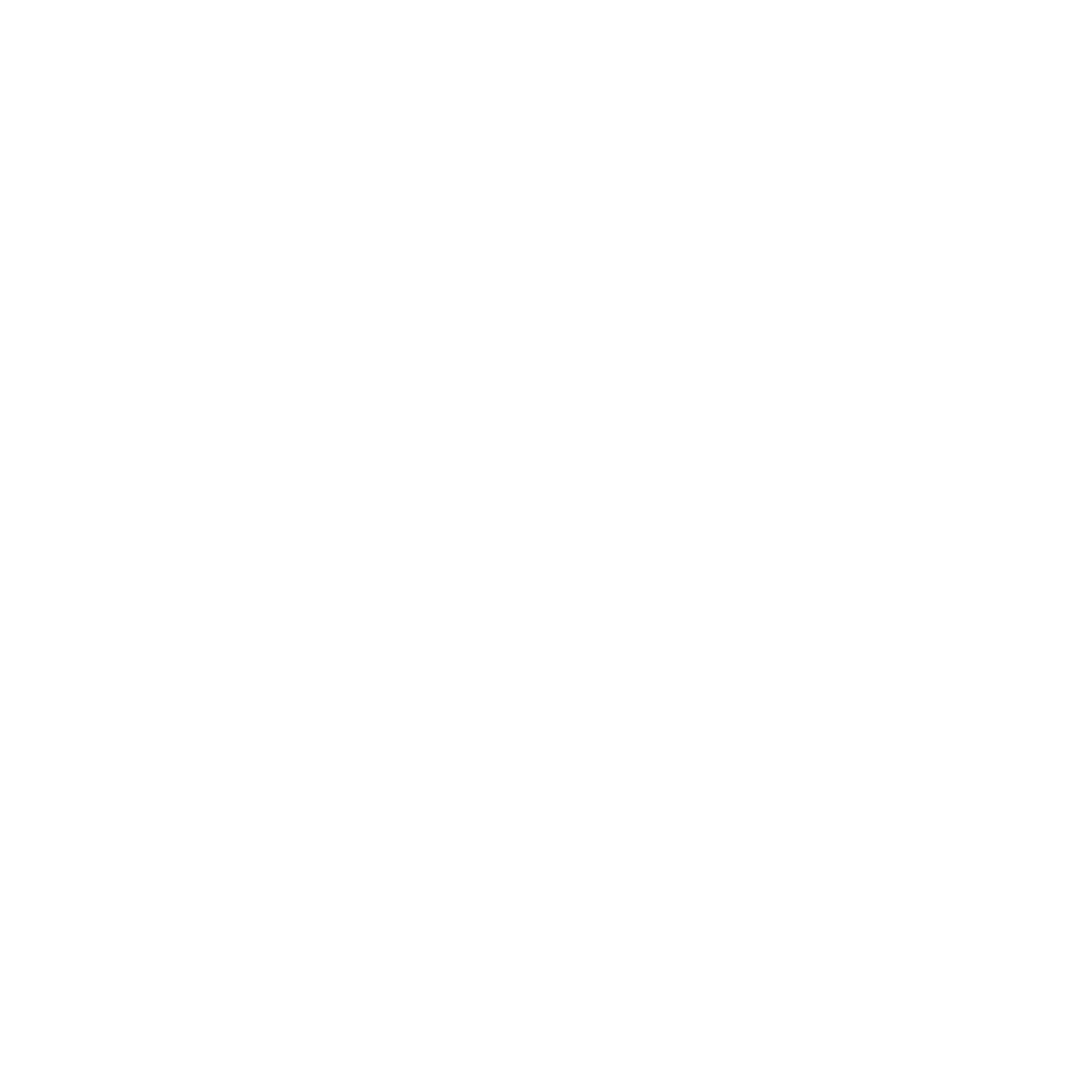bmw_logo_1color WHITE.png