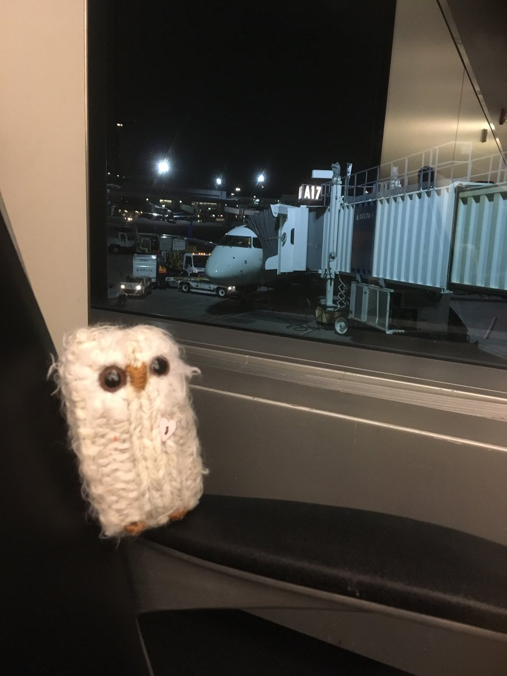 Pipers looks out at our plane from the Boston terminal