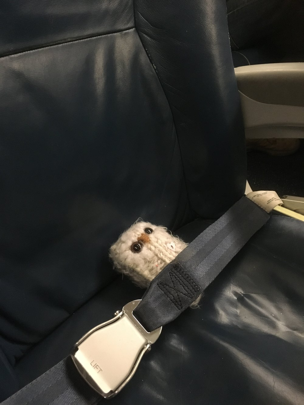 All buckled in and ready for take-off