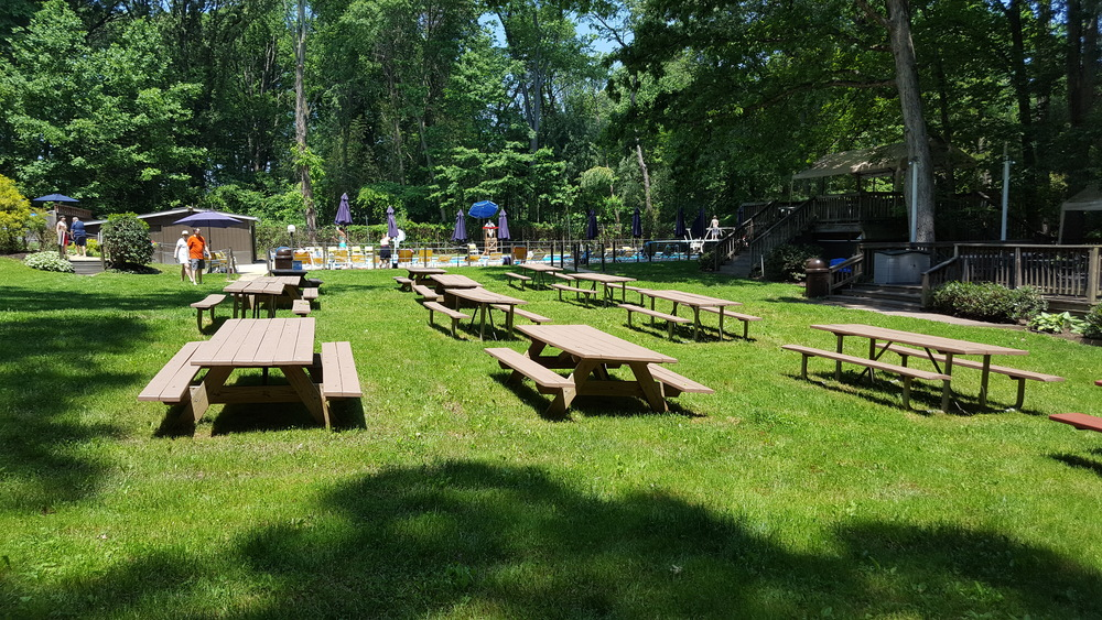 Picnic Grounds 3