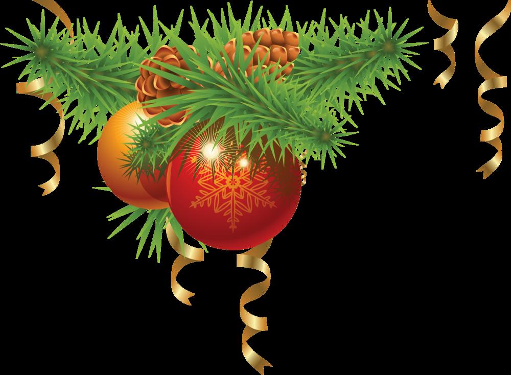 36-christmas-fir-tree-png-image.png