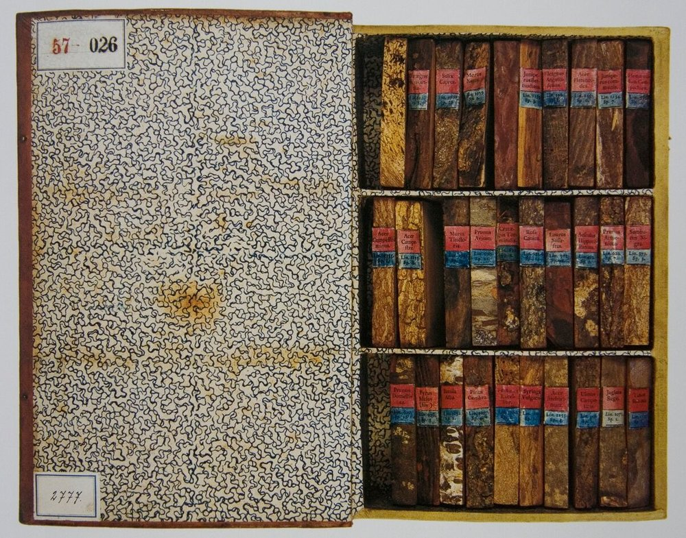 """""""... Of the 68 volumes prepared by Karel of Hinterlagen around 1825, each documents one type of wood. The panels are made of the wood of the relevant tree, the spine with the title in Latin and German is made of bark with lichen, inside there are roots, branches, leaves, flowers, fruits, sections of branches, and pests. Beyond the dendrology library, on the back wall of the passage, there is an illusive perspective painting by Achbauer, from 1825, which extends the corridor by means of optical illusion. """"  H  istory of The Monastery   Cabinet of Curiousities"""