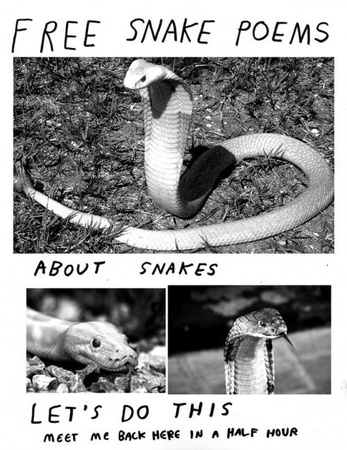 SnakePoems.jpeg