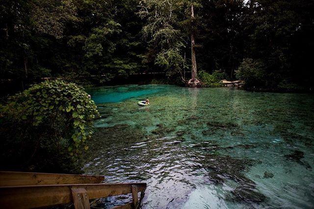 Ginnie Springs !! Who needs a relaxing weekend here? 🙋🏼 #ginniesprings #weekendgetaway #gainesville #floridasprings
