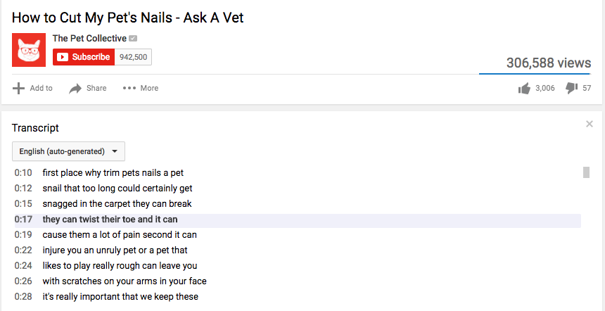 Above is an example of how the YouTube transcript appears below the video.