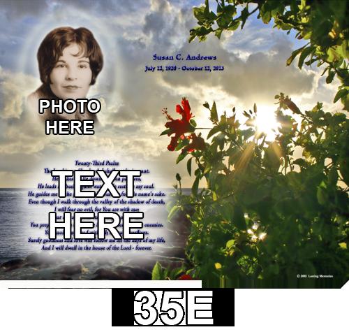 35E+copy.png