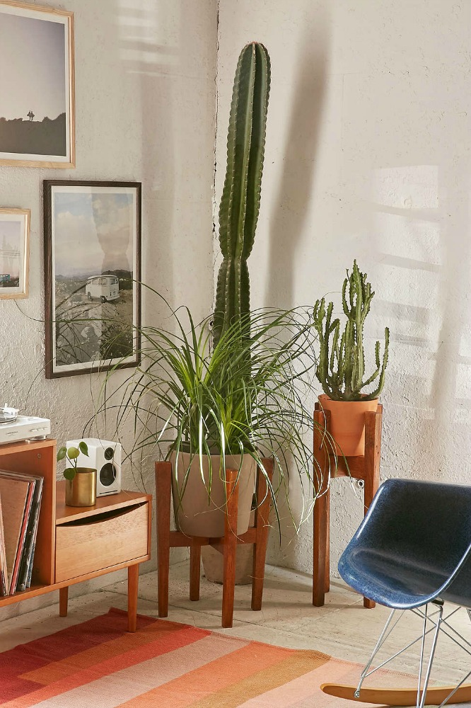 Mid Century Planters For Every Budget A Cheeky Lifestyle Chic