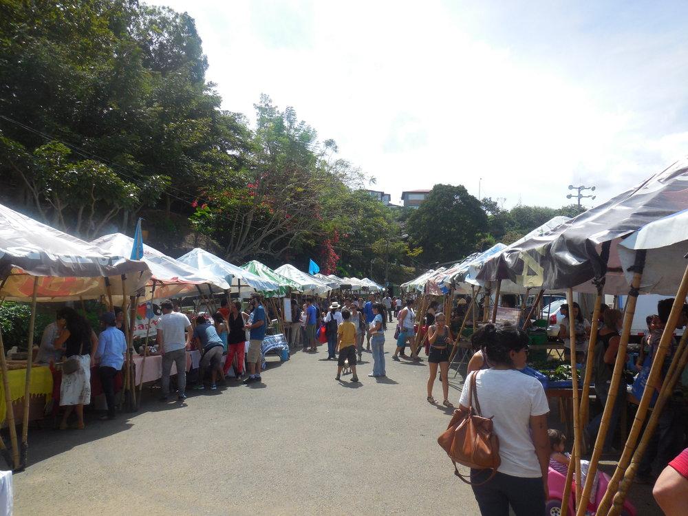 Feria Verde, San Jose