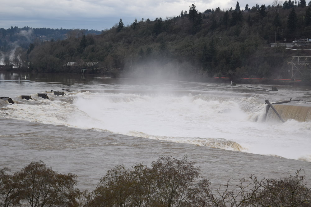 Willamette Falls.  You can't really tell from this picture, but these falls are 40 feet tall.