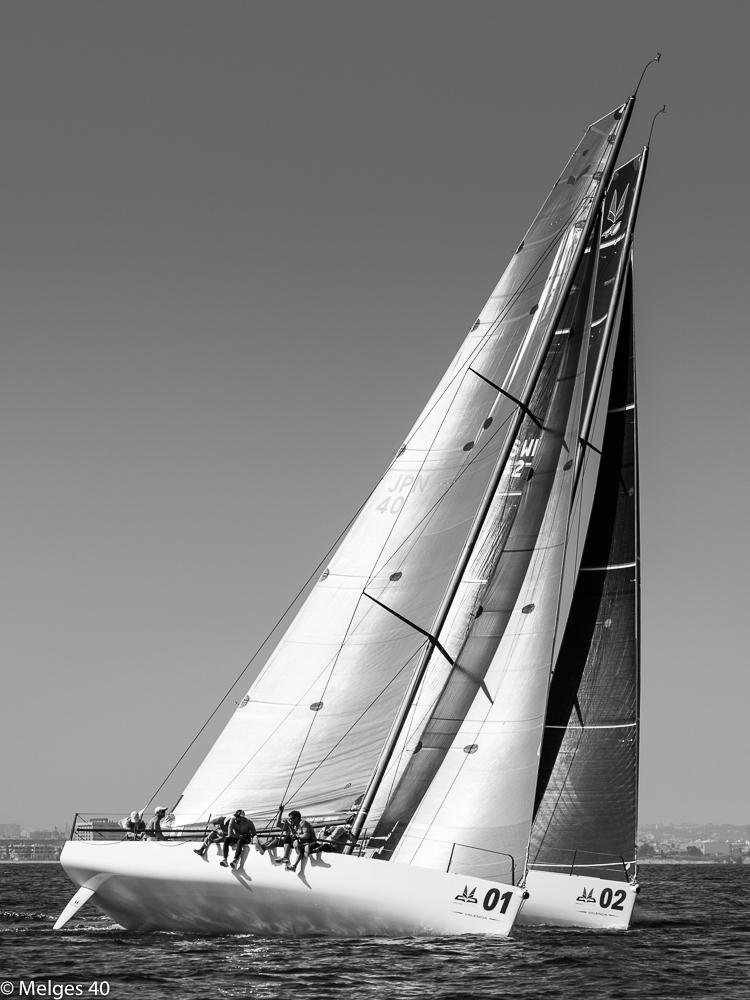 ph-barracuda-201.jpg