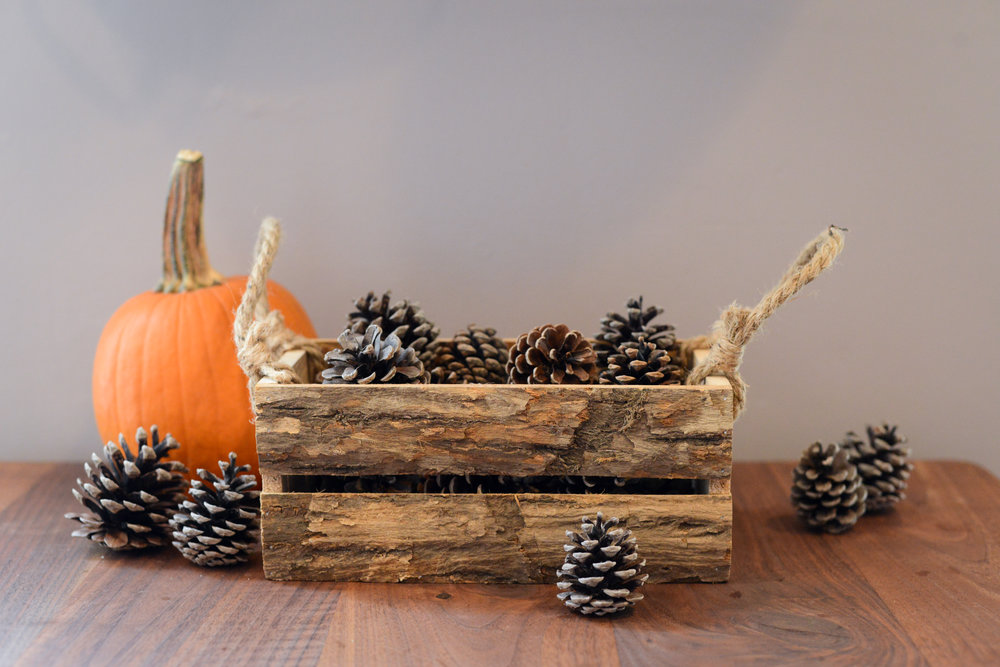 DIYZ Blog Fall Decor-001.jpg