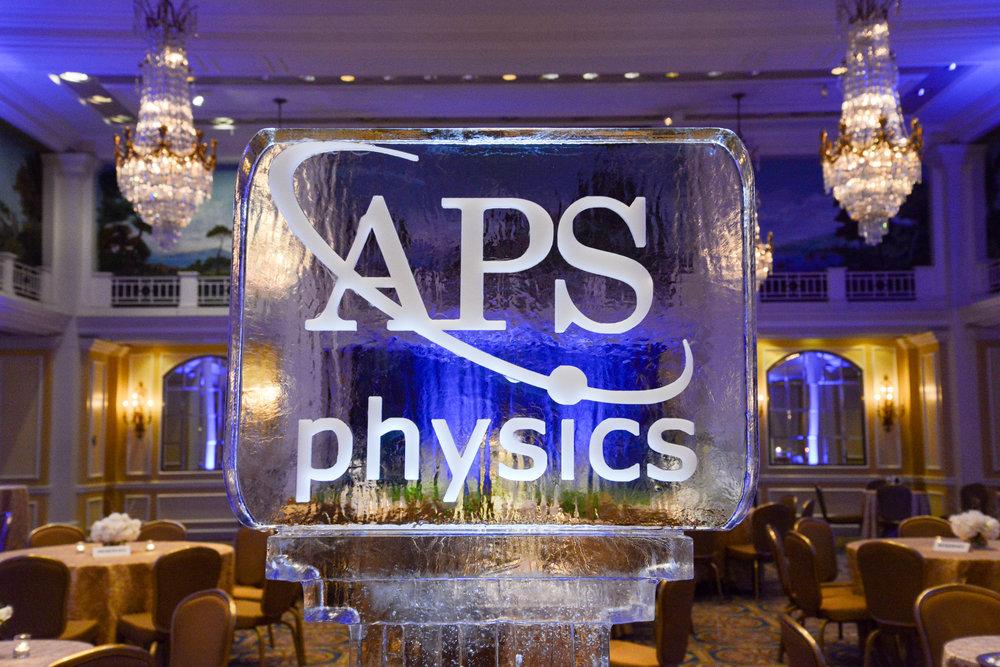 APS Medal 2019-06.jpg