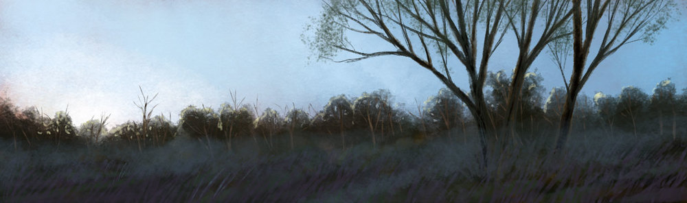 Edge of the Forest, by Amanda Spaid