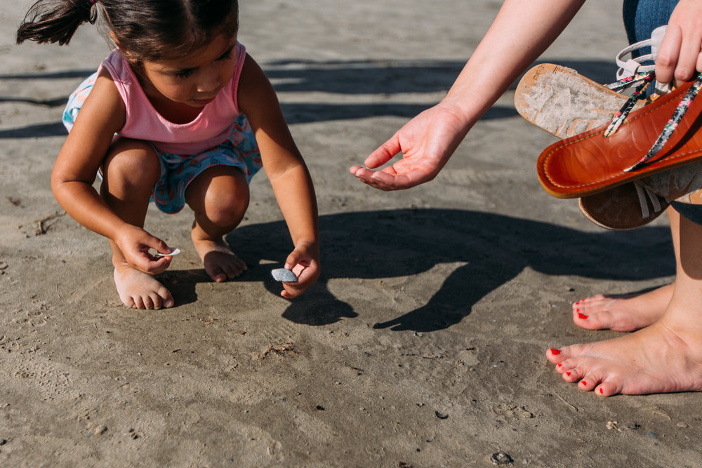 Little girl collecting seashells