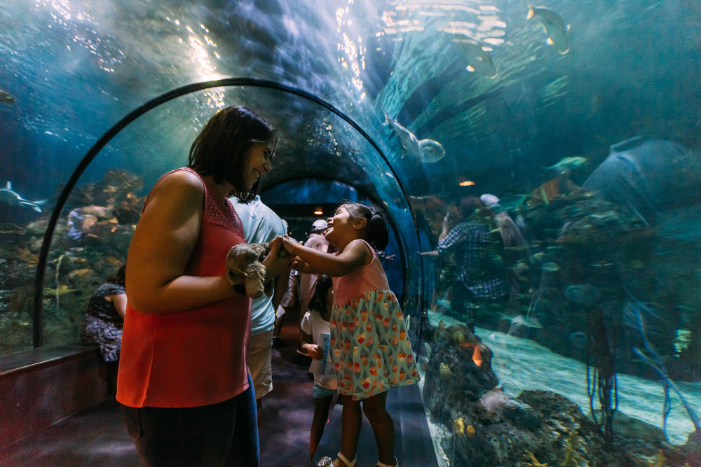Mom and daughter in shark tunnel