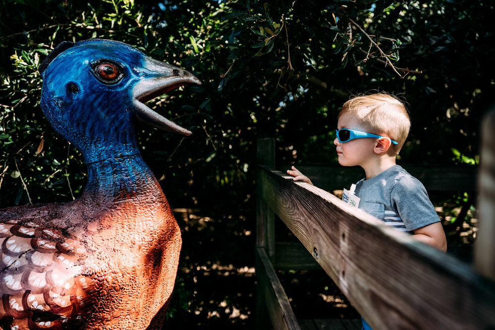 Documentary Family Photographer - Houston Zoo Trip-05815.jpg
