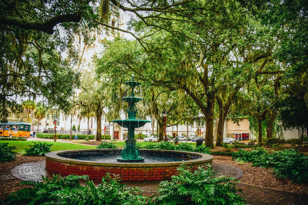 Savannah's beautiful parks with Spanish moss everywhere.