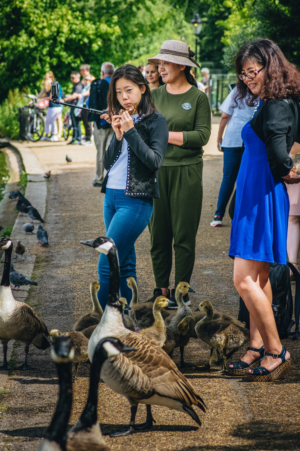 I tried to take a few street shots which seemed to be working out okay until the geese attacked me. These people found it hilarious.