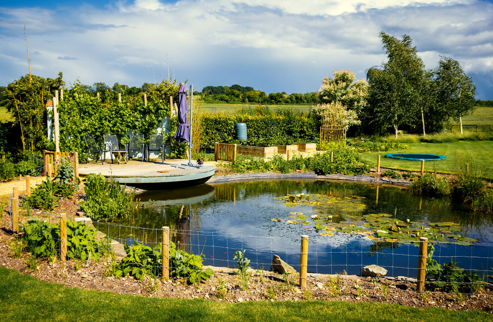 Wil-Ridpath-garden-designer-winchester-hampshire-romsey-2016-10041.jpg