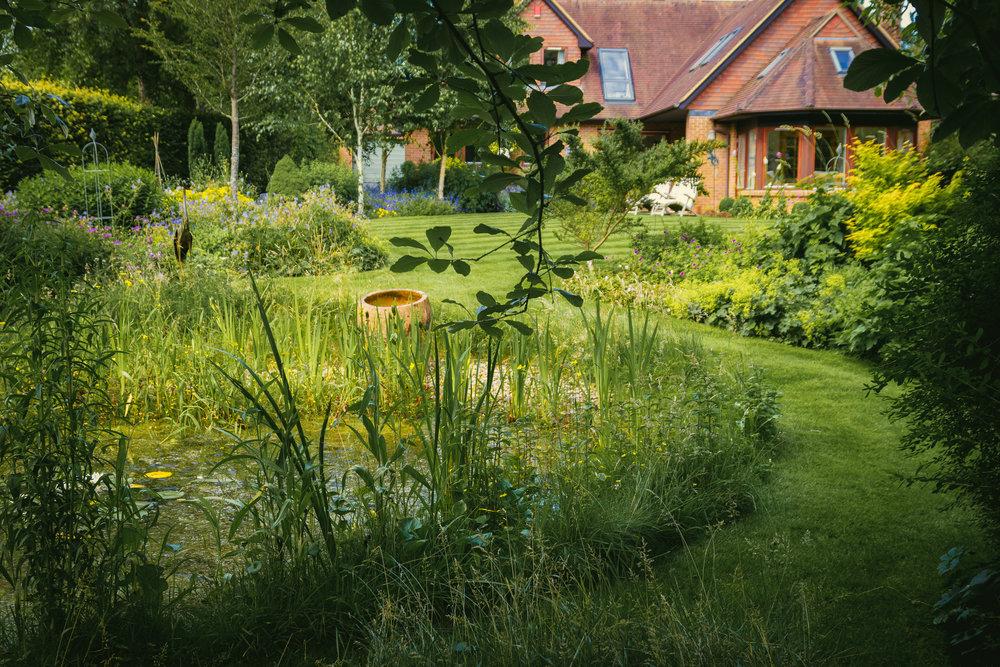 Wil-Ridpath-garden-designer-winchester-hampshire-romsey-2016-10018.jpg