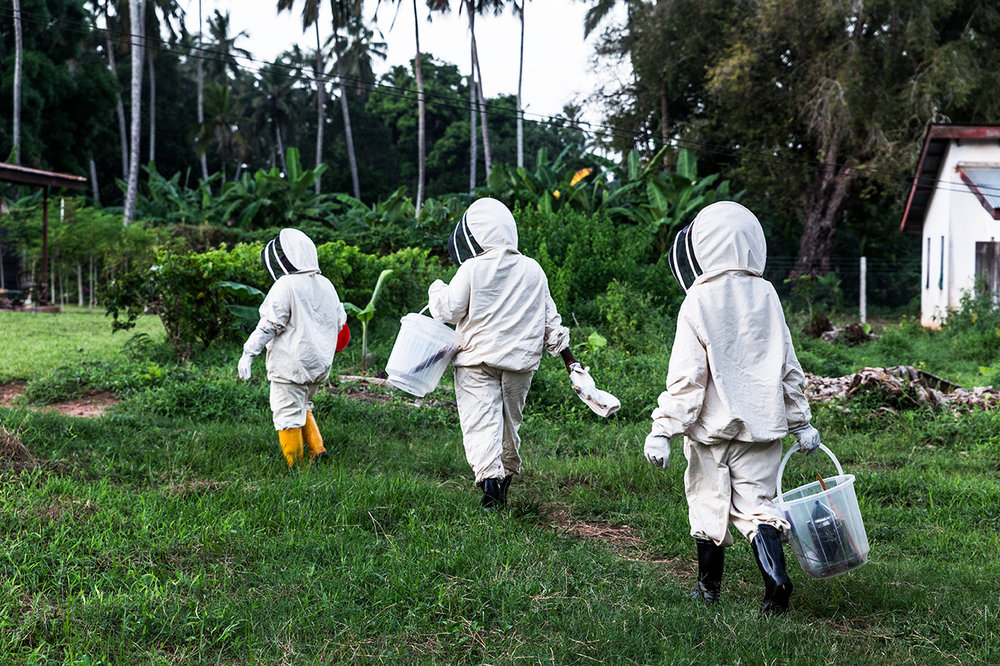 Barefoot College Zanzibar focuses on teaching women to tend hives. Here, three women walk back to the training center after checking the beehives.