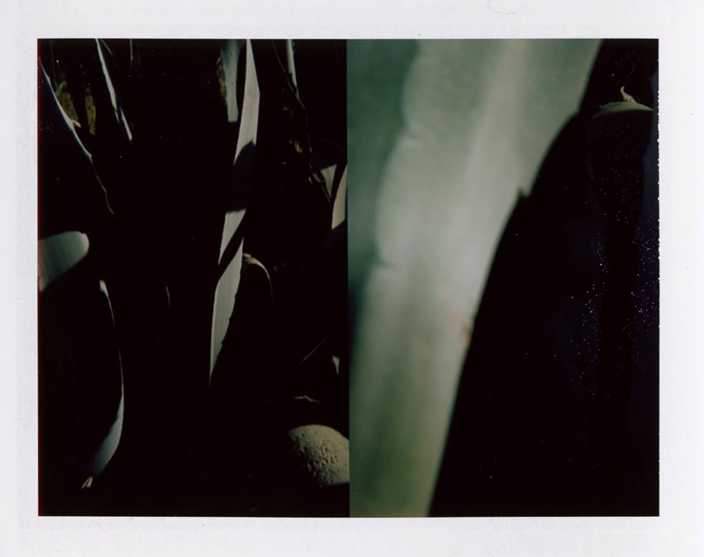 I.D.021, The Polaroid Revolutionary Workers, 2013, Polaroid Picture, 107mm x 86mm