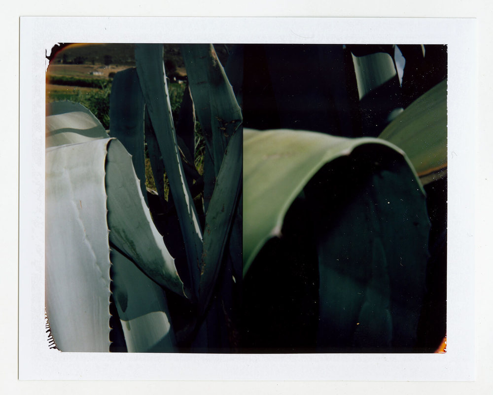 I.D.066, The Polaroid Revolutionary Workers, 2013, Polaroid Picture, 107mm x 86mm