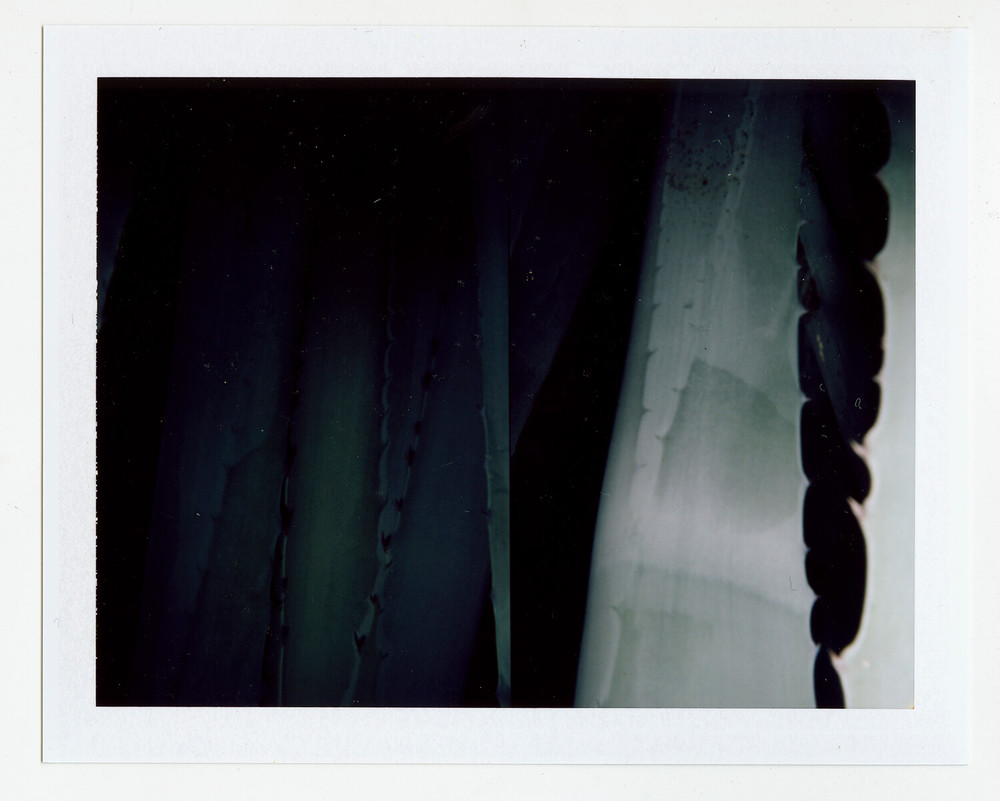I.D.065, The Polaroid Revolutionary Workers, 2013, Polaroid Picture, 107mm x 86mm