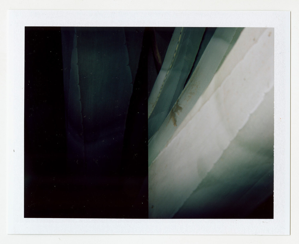 I.D.083, The Polaroid Revolutionary Workers, 2013, Polaroid Picture, 107mm x 86mm