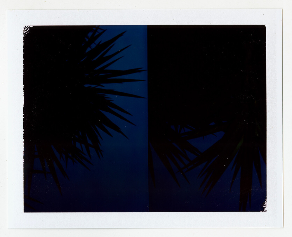 I.D.084, The Polaroid Revolutionary Workers, 2013, Polaroid Picture, 107mm x 86mm