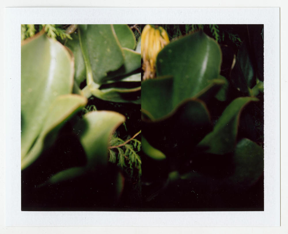 I.D.089, The Polaroid Revolutionary Workers, 2013, Polaroid Picture, 107mm x 86mm