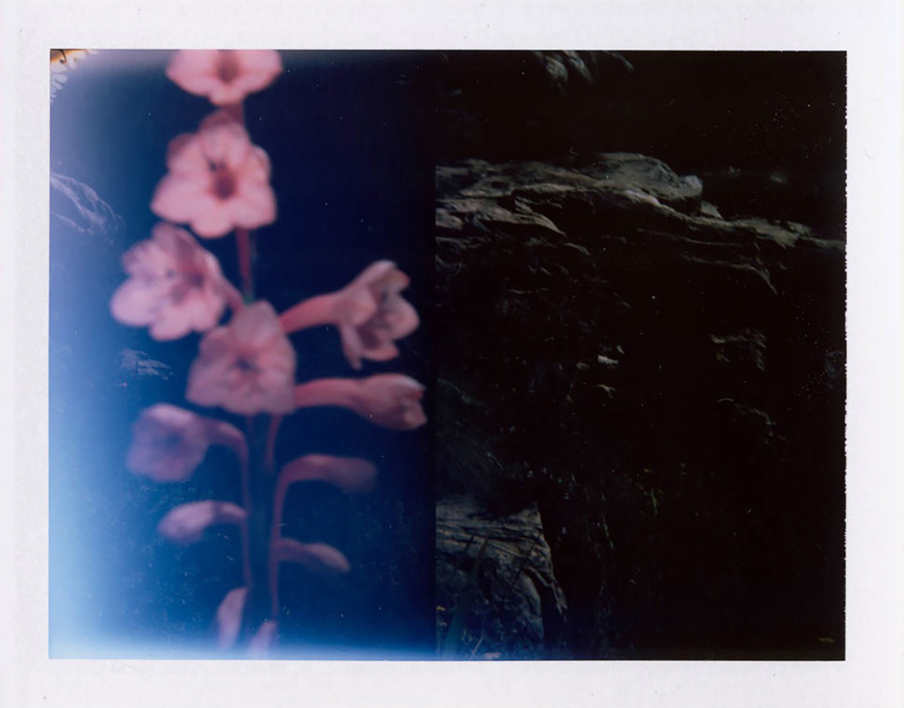 I.D.033, The Polaroid Revolutionary Workers, 2013, Polaroid Picture, 107mm x 86mm