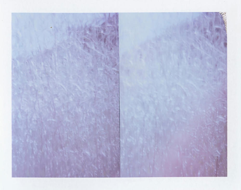 I.D.093, The Polaroid Revolutionary Workers, 2013, Polaroid Picture, 107mm x 86mm