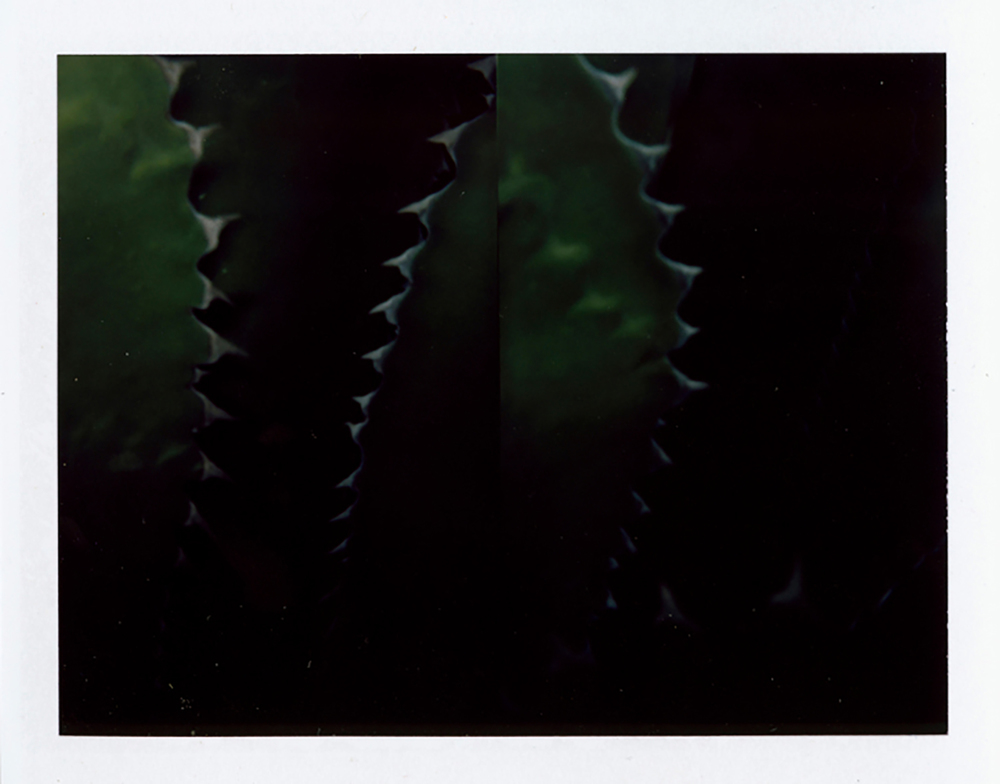 I.D.054, The Polaroid Revolutionary Workers, 2013, Polaroid Picture, 107mm x 86mm