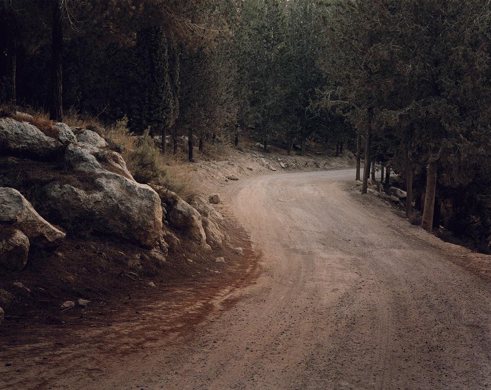 Ben Shemen Forest, (c-type print, 19x23-, 2006)