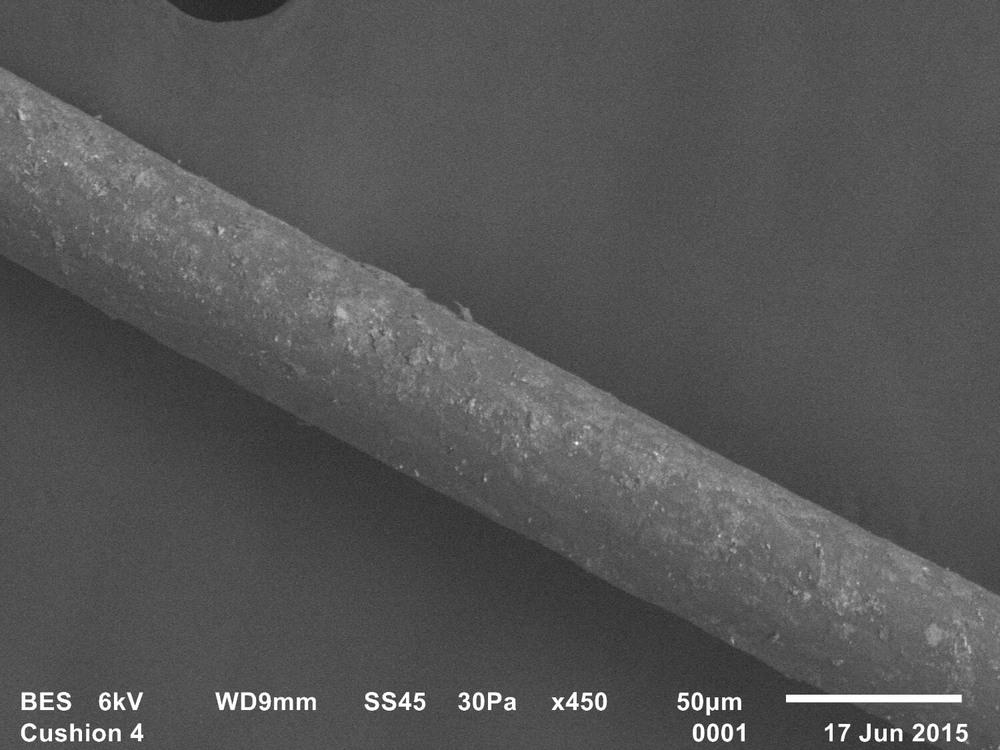 Trace evidence 4, Freud's Qashqa'i rug, Adam Broomberg & Oliver Chanarin, 2015, SEM, Backscattered electron shadow image, 35mm slide