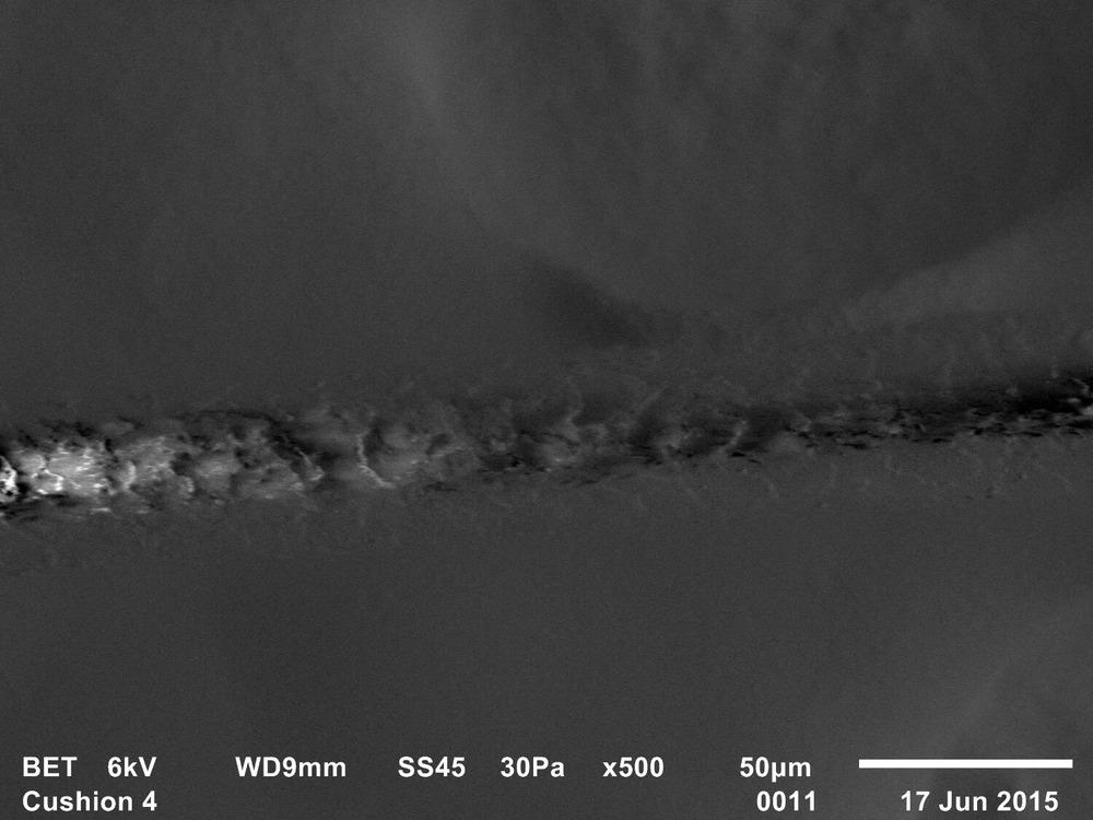 Trace evidence 6, Freud's Qashqa'i rug, Adam Broomberg & Oliver Chanarin, 2015, SEM, Backscattered electron topographic image, 35mm slide