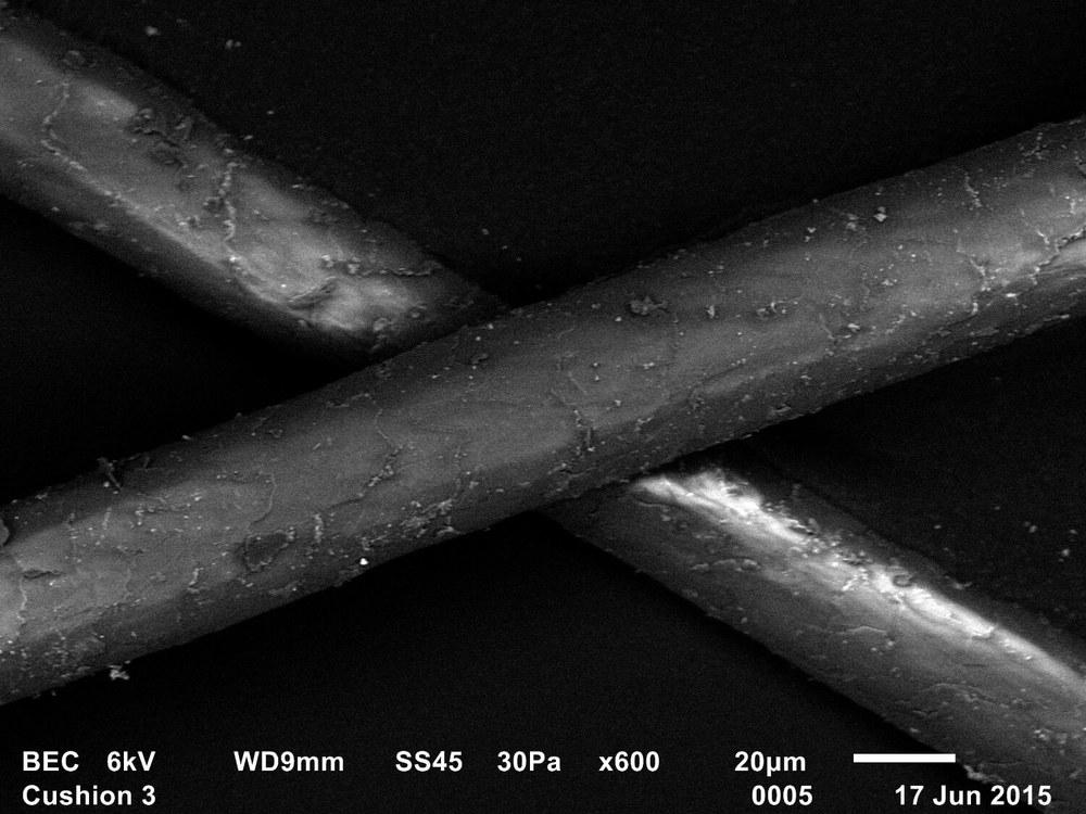 Trace evidence 8, Freud's Qashqa'i rug, Adam Broomberg & Oliver Chanarin, 2015, SEM, Backscattered electron composition image, 35mm slide