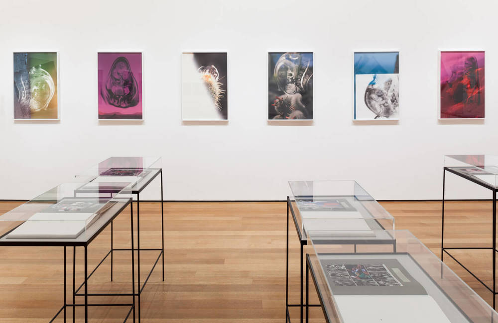 Installation view of the exhibition New Photography 2013. © 2013 The Museum of Modern Art, New York. Photograph by Thomas Griesel - 3.jpg