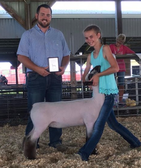 Grand Champion Ewe - Martinsville Ag Show (IL)Shown by Karli Titus