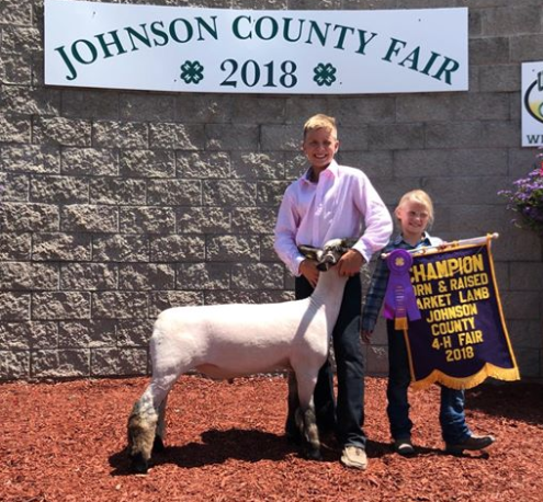 Grand Champion B&B - Johnson Co. (IN) Shown by Dylan Duncan